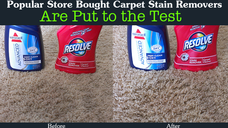 Popular Carpet Stain Removers Are Put to the Test - Find Out Which Ones Work and On Which Kind of Stain